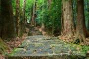 世界遺産「紀伊山地 熊野那智大社」へ!中辺路を歩こう【和歌山県】