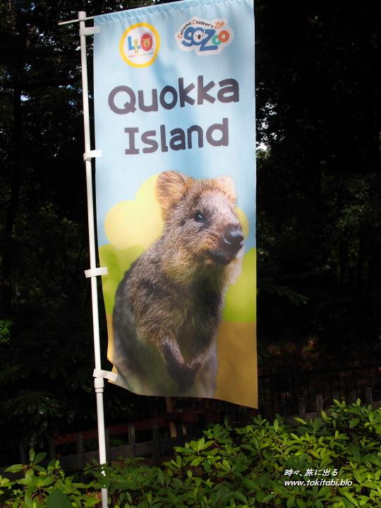 こども動物自然公園 クオッカアイランド