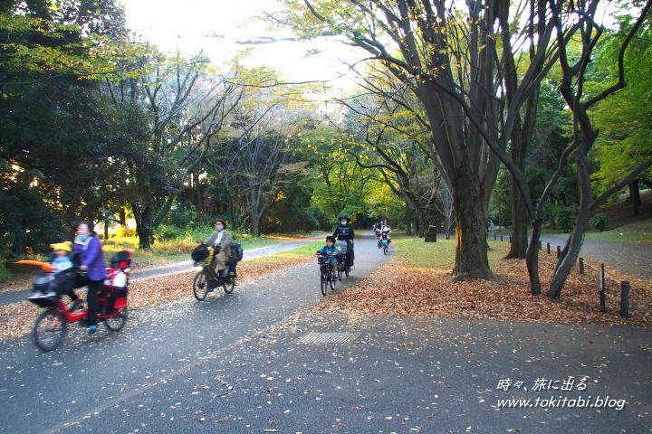 国営昭和記念公園 サイクリングコースも充実