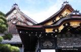 「日本100名城」へ行ってみよう!
