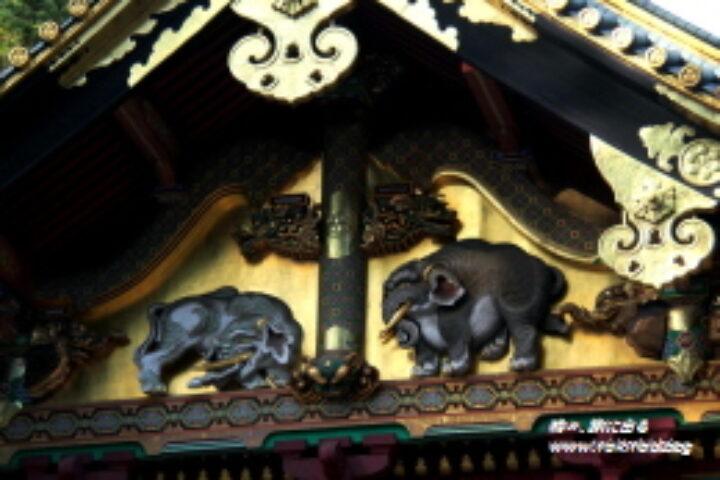 【日光東照宮】大人の修学旅行、知るほど謎と興味が尽きない世界遺産