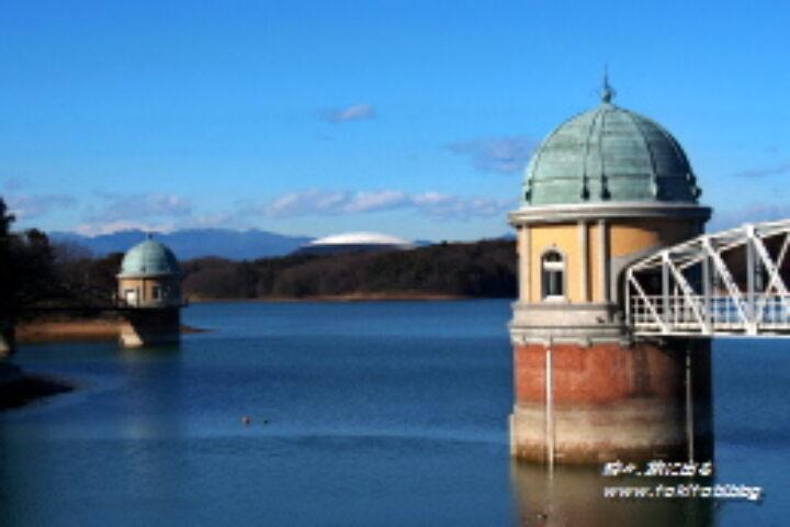 「狭山公園」は多摩湖湖畔の自然豊かな公園、自転車道でのサイクリングも人気!