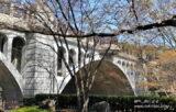 王子に風情のある公園!「音無親水公園」、満開の桜が美しい【東京都北区】