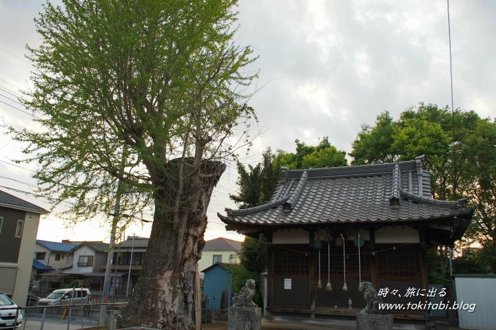 杉戸町 愛宕神社